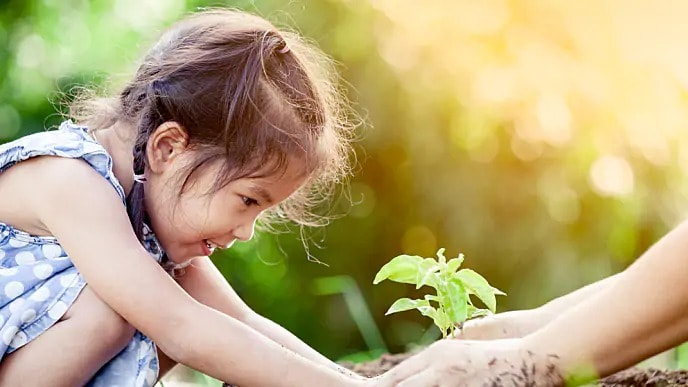 Child with macrodontia putting a plant into dirt