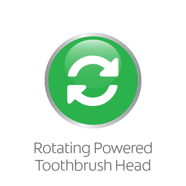 toothbrush rotating electric head